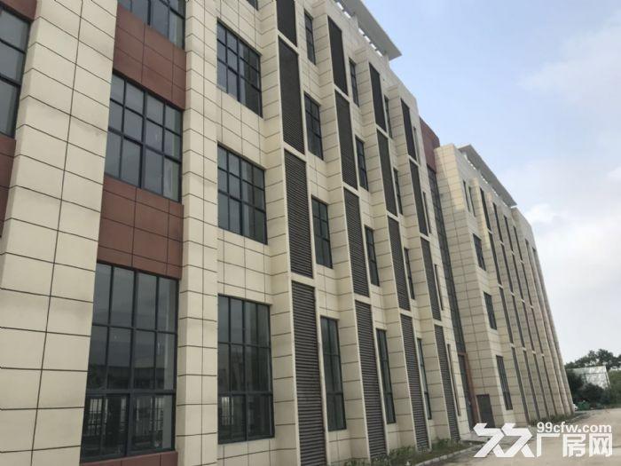 独立停车场,大面积厂房一栋招租-图(5)