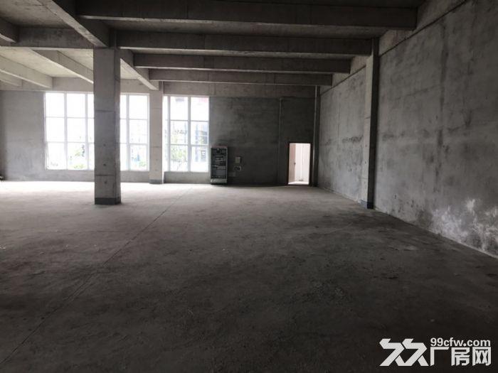 中南集团厂房仓库出售有产权环评消防-图(4)