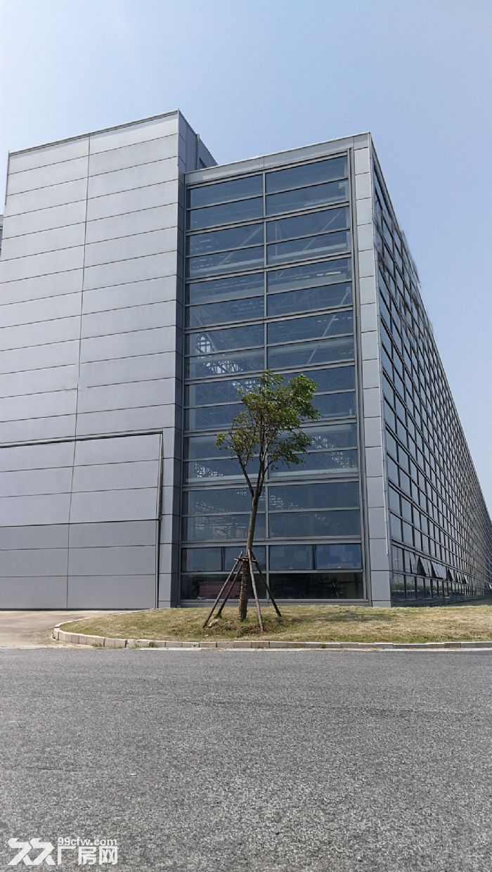 与特斯拉为邻,临港自贸区新片区核心区稀缺13米单层高标厂房-图(2)