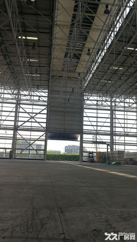 与特斯拉为邻,临港自贸区新片区核心区稀缺13米单层高标厂房-图(4)