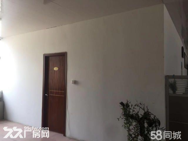 张村厂房出租1300平-图(4)