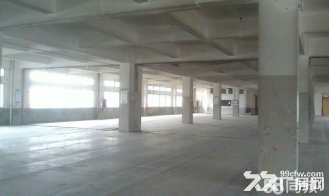 泉州城东标准厂房招租-图(2)