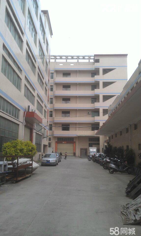泉州城东标准厂房招租-图(5)