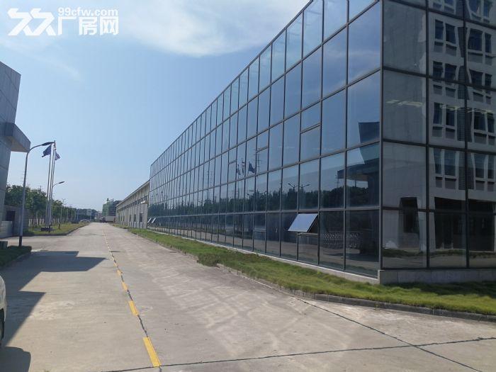 蔡甸军山厂房出租700−20000平米一楼厂房可分租可隔断可托管-图(1)