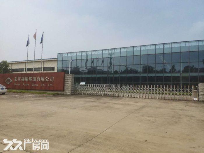 蔡甸军山厂房出租700−20000平米一楼厂房可分租可隔断可托管-图(5)