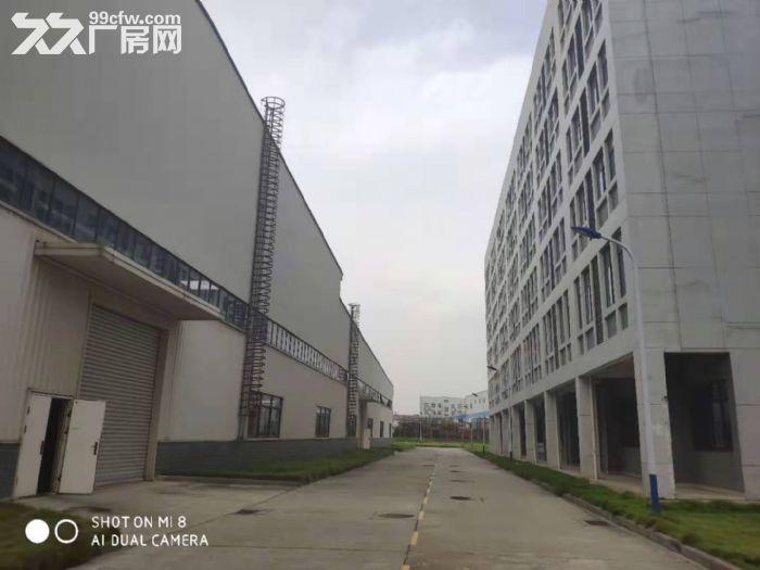 蔡甸军山厂房出租700−20000平米一楼厂房可分租可隔断可托管-图(4)