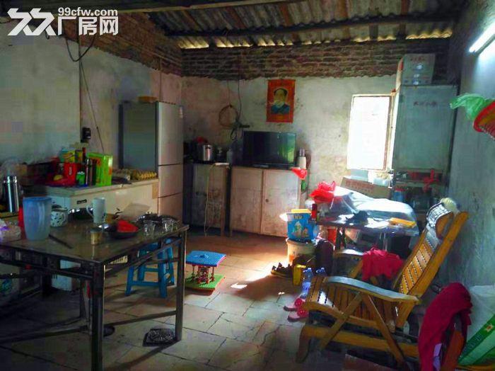 从化鳌头106国道附近五丰100亩山地果园房屋转让-图(4)