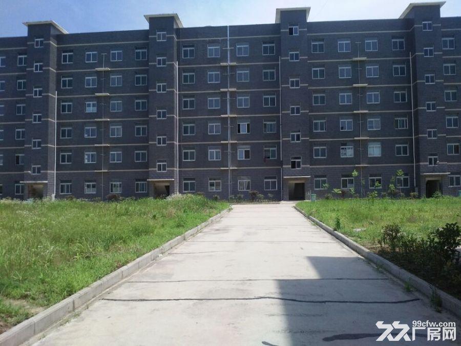 武汉标准厂房出租鄂州华容-图(1)