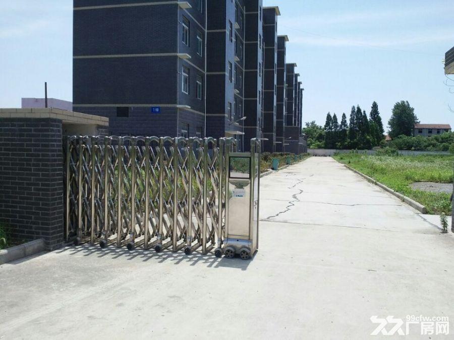 武汉标准厂房出租鄂州华容-图(2)