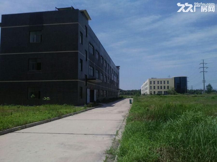 武汉标准厂房出租鄂州华容-图(4)