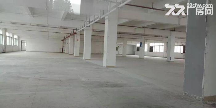一手业主园区管理面积实在,大路边,大石1500方标准厂房出租-图(5)