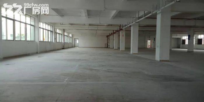 一手业主园区管理面积实在,大路边,大石1500方标准厂房出租-图(6)