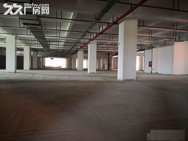 闵行松江嘉定全新食品园区出租独栋有天然气三证齐全-图(3)