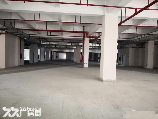 闵行松江嘉定全新食品园区出租独栋有天然气三证齐全-图(5)