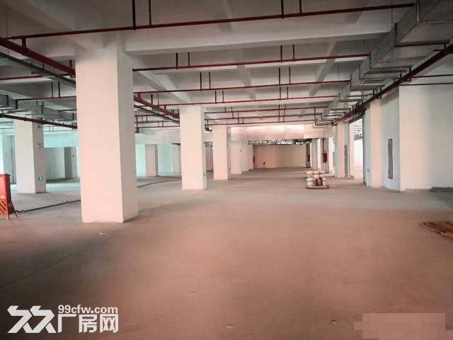 闵行松江嘉定全新食品园区出租独栋有天然气三证齐全-图(4)