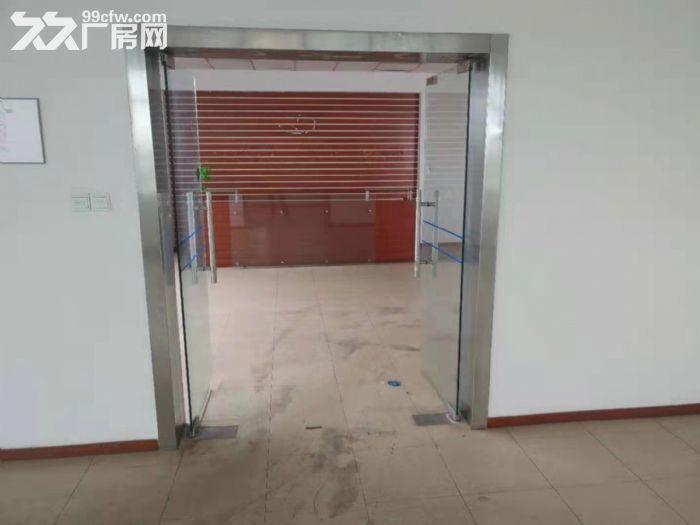 松江城区独门独院单层8000平米厂房出租位置好-图(3)
