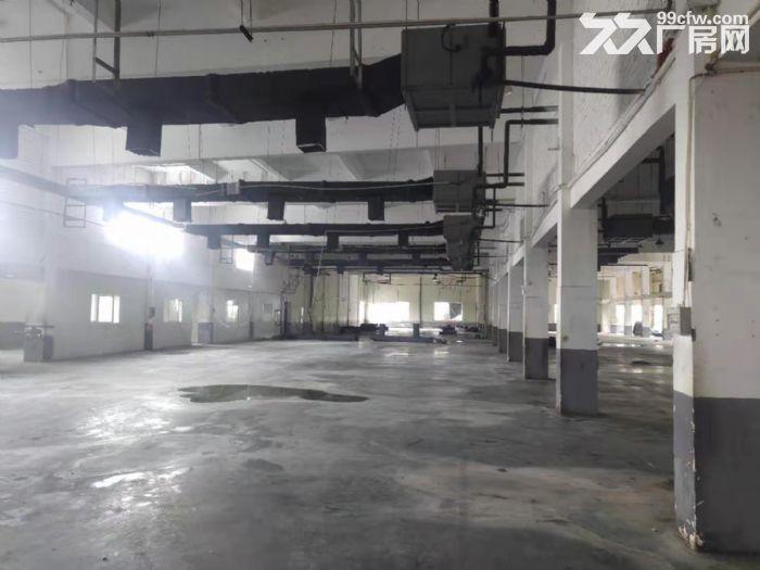 松江城区独门独院单层8000平米厂房出租位置好-图(5)