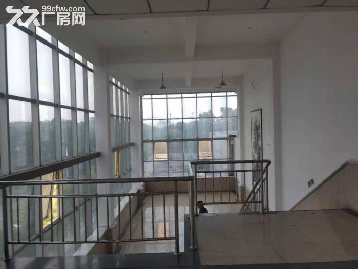 松江城区独门独院单层8000平米厂房出租位置好-图(4)
