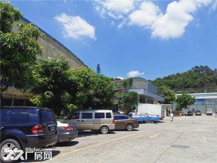 远离居民,砖外墙,番禺石基1200平方简易厂房出租-图(3)