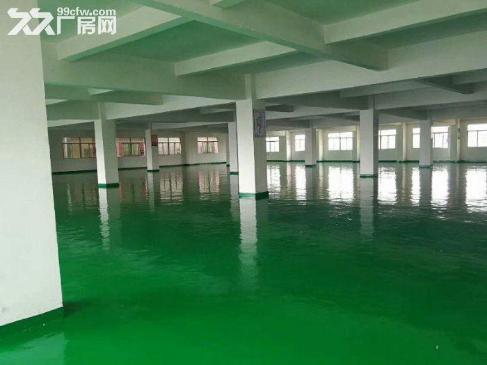 原房东!塘厦镇中心3楼厂房800平方豪华装修适合电子行业-图(5)