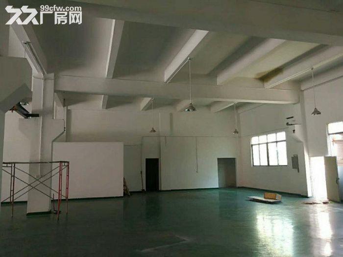 塘厦石马豪华独院厂房一楼800平方米出租,6米带牛角-图(2)