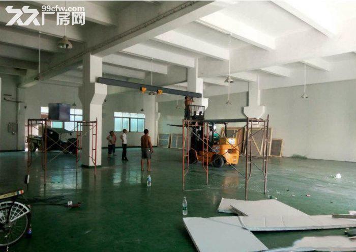 塘厦石马豪华独院厂房一楼800平方米出租,6米带牛角-图(1)