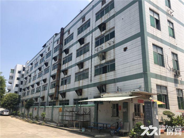 租金便,带管理,番禺石楼6800平方标准厂房出租-图(3)