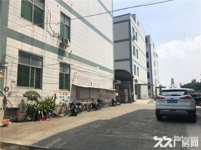 租金便,带管理,番禺石楼6800平方标准厂房出租-图(4)