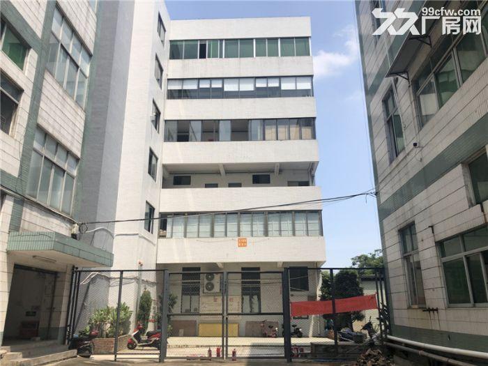租金便,带管理,番禺石楼6800平方标准厂房出租-图(7)