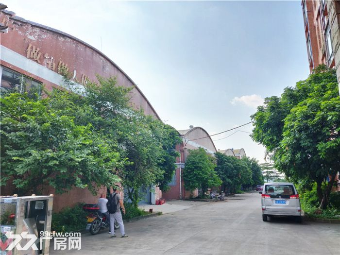 独门独院,空地大,番禺石基8300平方简易厂房出租-图(3)