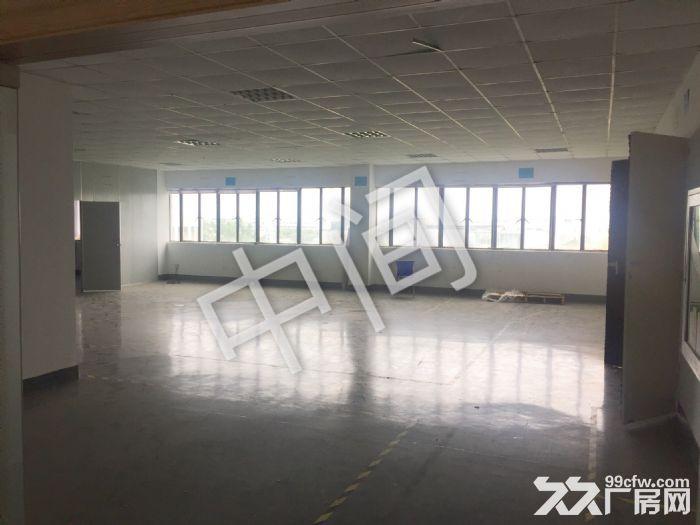 上海市浦东新区金桥自由贸易区(中心地段)厂房招租-图(4)