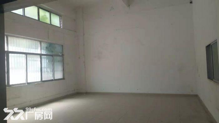 龙华清湖地铁口附近新出一楼1200平标准厂房出租-图(4)