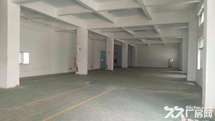 龙华清湖地铁口附近新出一楼1200平标准厂房出租-图(6)