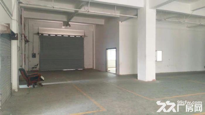 龙华清湖地铁口附近新出一楼1200平标准厂房出租-图(5)