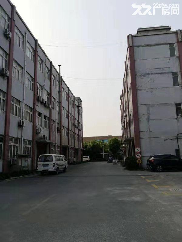 宝山工业厂房/104厂房-图(3)