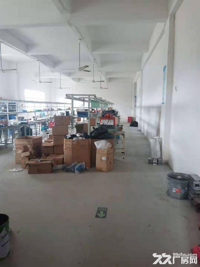 凤岗楼上带装修厂房出租500平电子材料配件-图(2)