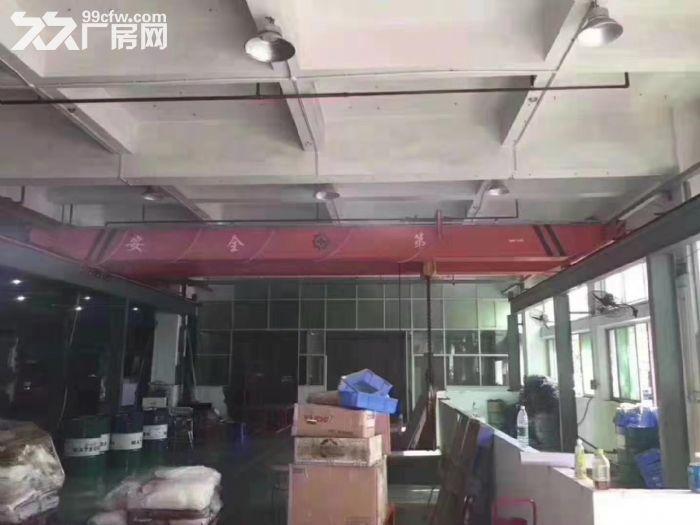 凤岗竹塘现成行车办公室装修标准厂房出租一楼1780平-图(2)