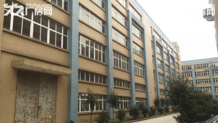 急租爱迪克斯工业园750平米四楼厂房带2吨货梯租金10元/平米/月-图(4)