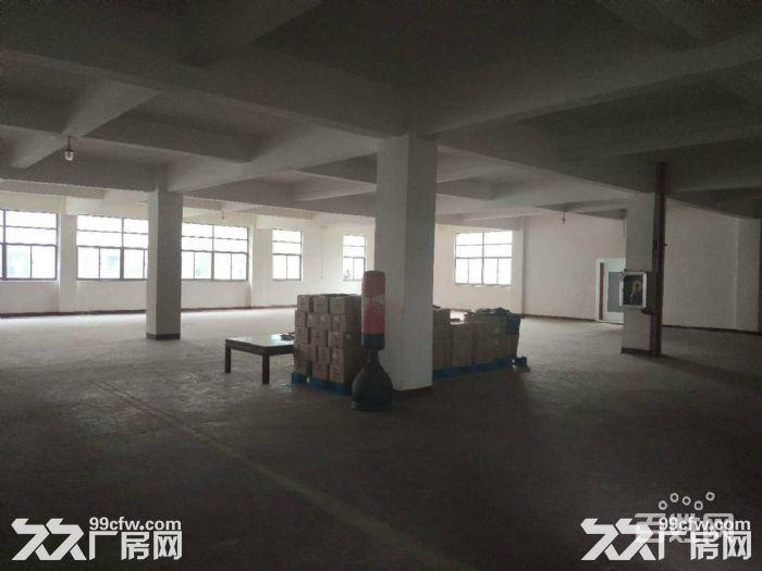 东西湖新城十三城路3156平米全新独栋厂房出售-图(2)