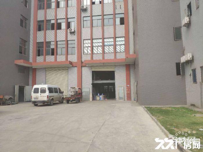 东西湖新城十三城路3156平米全新独栋厂房出售-图(3)
