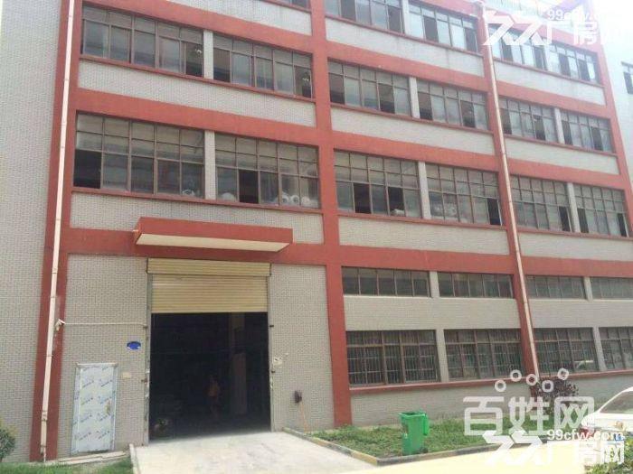 东西湖新城十三城路3156平米全新独栋厂房出售-图(4)