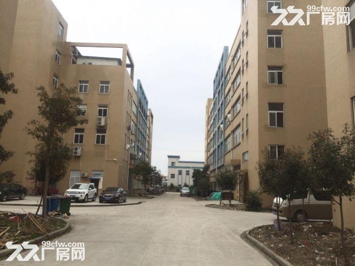 急租爱迪克斯工业园750平米四楼厂房带2吨货梯租金10元/平米/月-图(2)