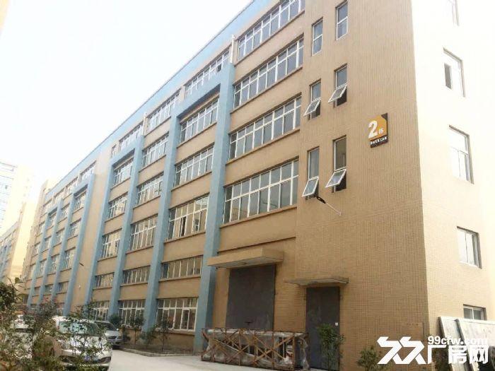 急租爱迪克斯工业园750平米四楼厂房带2吨货梯租金10元/平米/月-图(6)
