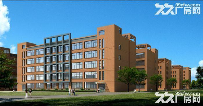急租爱迪克斯工业园750平米四楼厂房带2吨货梯租金10元/平米/月-图(7)