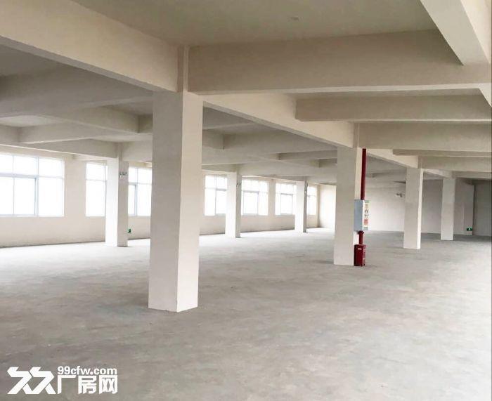 急租爱迪克斯工业园750平米四楼厂房带2吨货梯租金10元/平米/月-图(5)