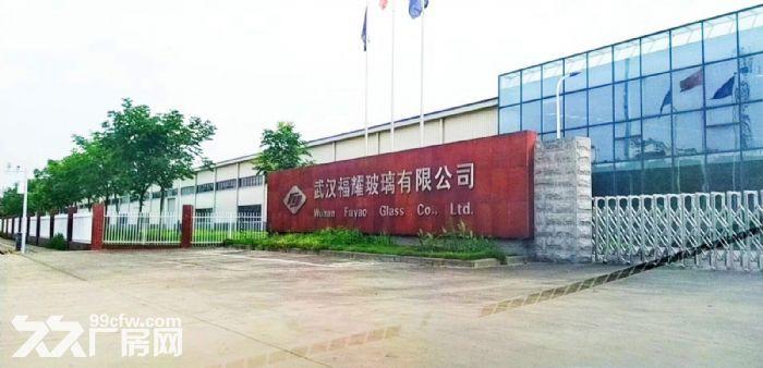 沌口开发区厂房出租700−20000平米一楼厂房可分租可隔断可托管-图(5)