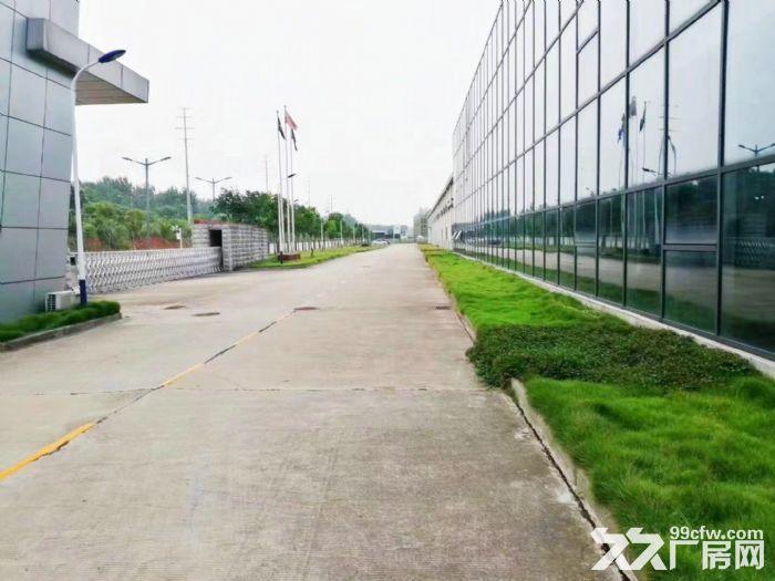 沌口开发区厂房出租700−20000平米一楼厂房可分租可隔断可托管-图(6)