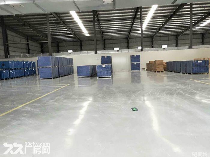 沌口开发区格力电器旁一楼单层厂房2万方出租可小面积分租-图(3)
