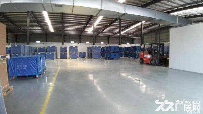 沌口开发区格力电器旁一楼单层厂房2万方出租可小面积分租-图(5)