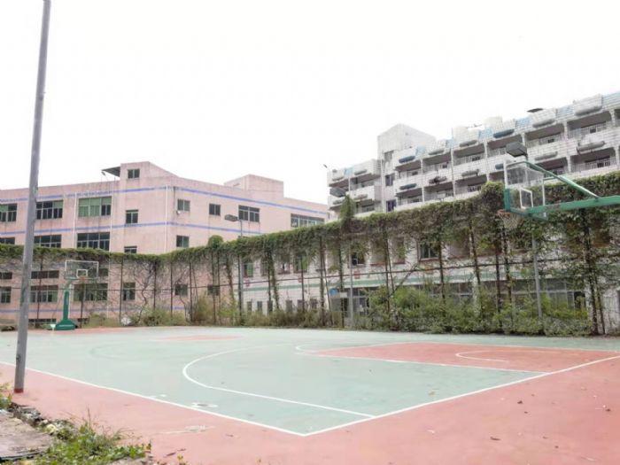 出租观澜街道汽车站旁红本厂房6000平,交通便利空地面积大-图(2)